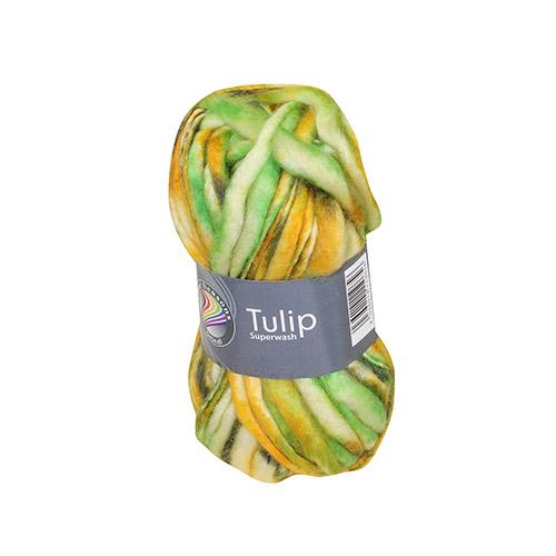 b-tulip02.jpg (500×500)