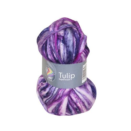 b-tulip05.jpg (500×500)