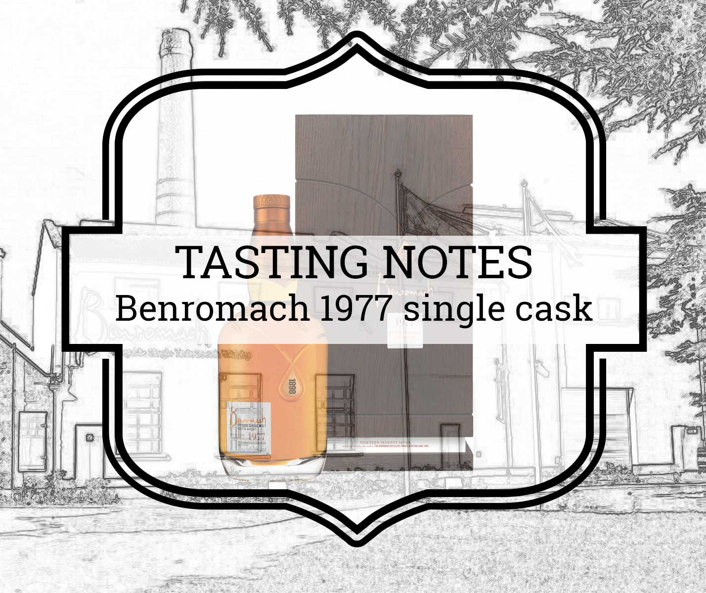 A Tasty Dram tasting notes Benromach 1977 single cask