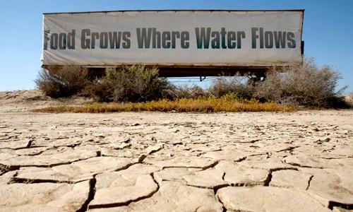 Food don't grow.jpg