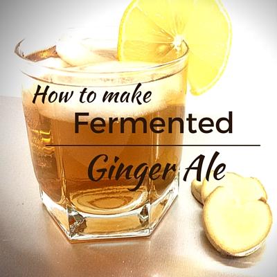 Homemade Ginger Ale | Fermentools.com