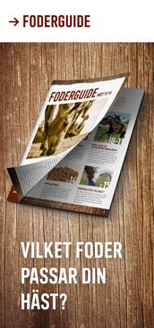 Läs vår foderguide och hitta ett hästfoder för din häst. Köp hästfoder online på Granngården.se