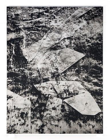 Justin Brice Guariglia, Landscape Study C-III.jpg