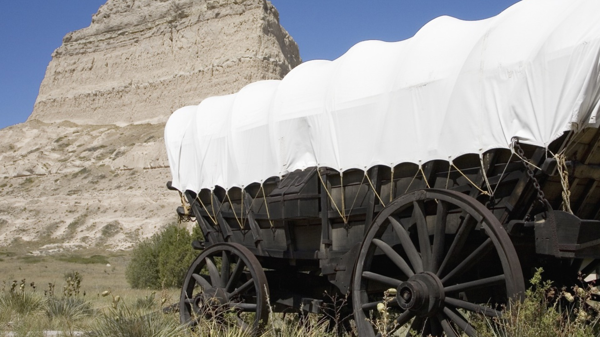 Ghastly Things Nobody Told You Happened On The Oregon Trail
