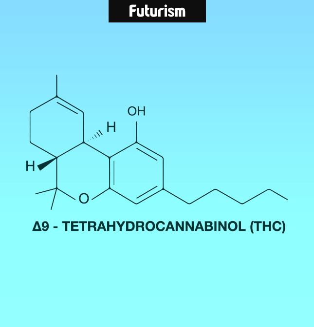 Cannabinoids2.png