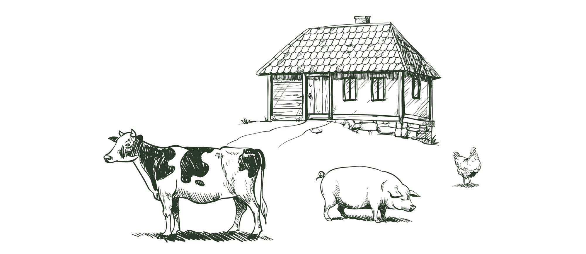 sumadinac ilustracije 1