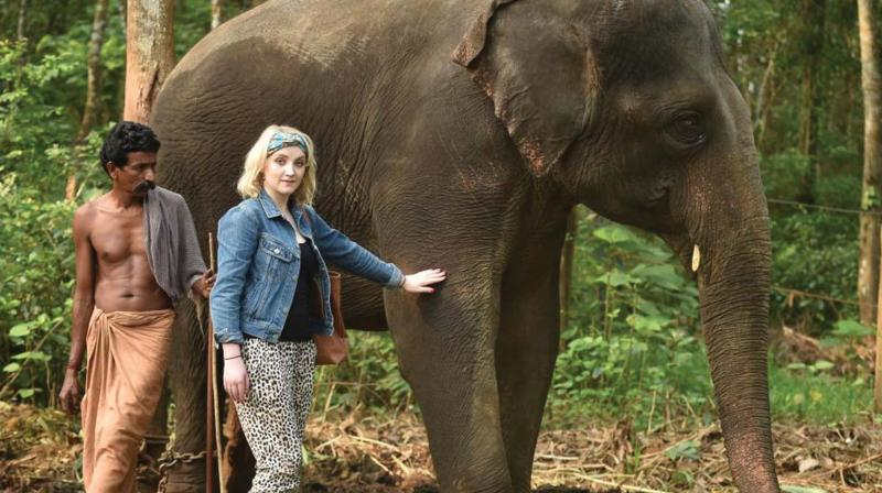 evanna-lynch-kerala-elephants.jpeg