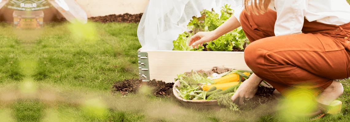 Köp produkter för trädgården som pallkragar, jord, gräsklippare, grästrimmers, häcksaxar, trädgårdsredskap, bevattning, krukor och gödsel online eller i butik hos Granngården!
