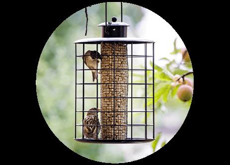 Köp fågelmatare online på granngården.se