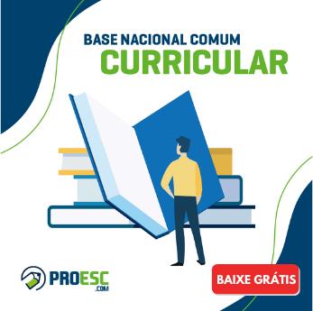 Base Nacional Comum Curricular - BNCC