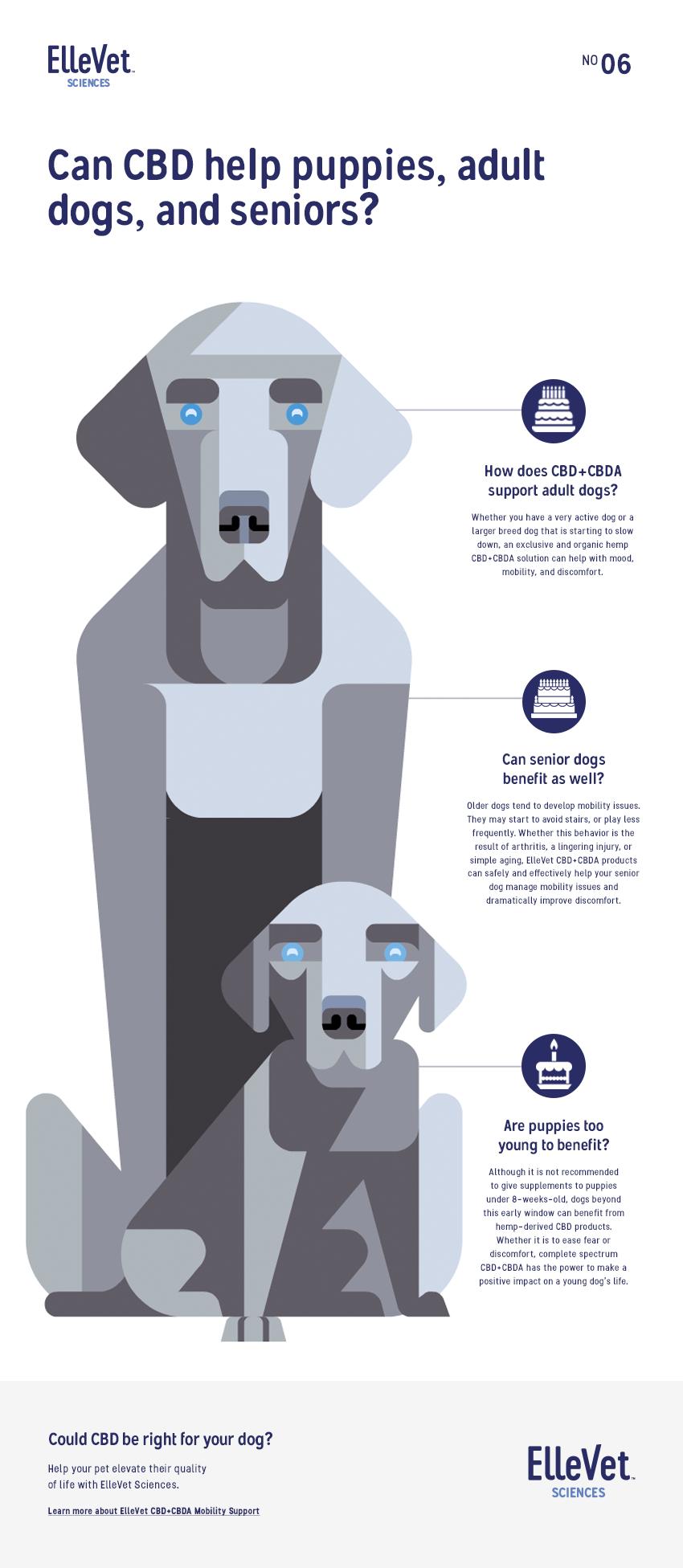 Ellevet_Infographic_#6_v1_WIP.png