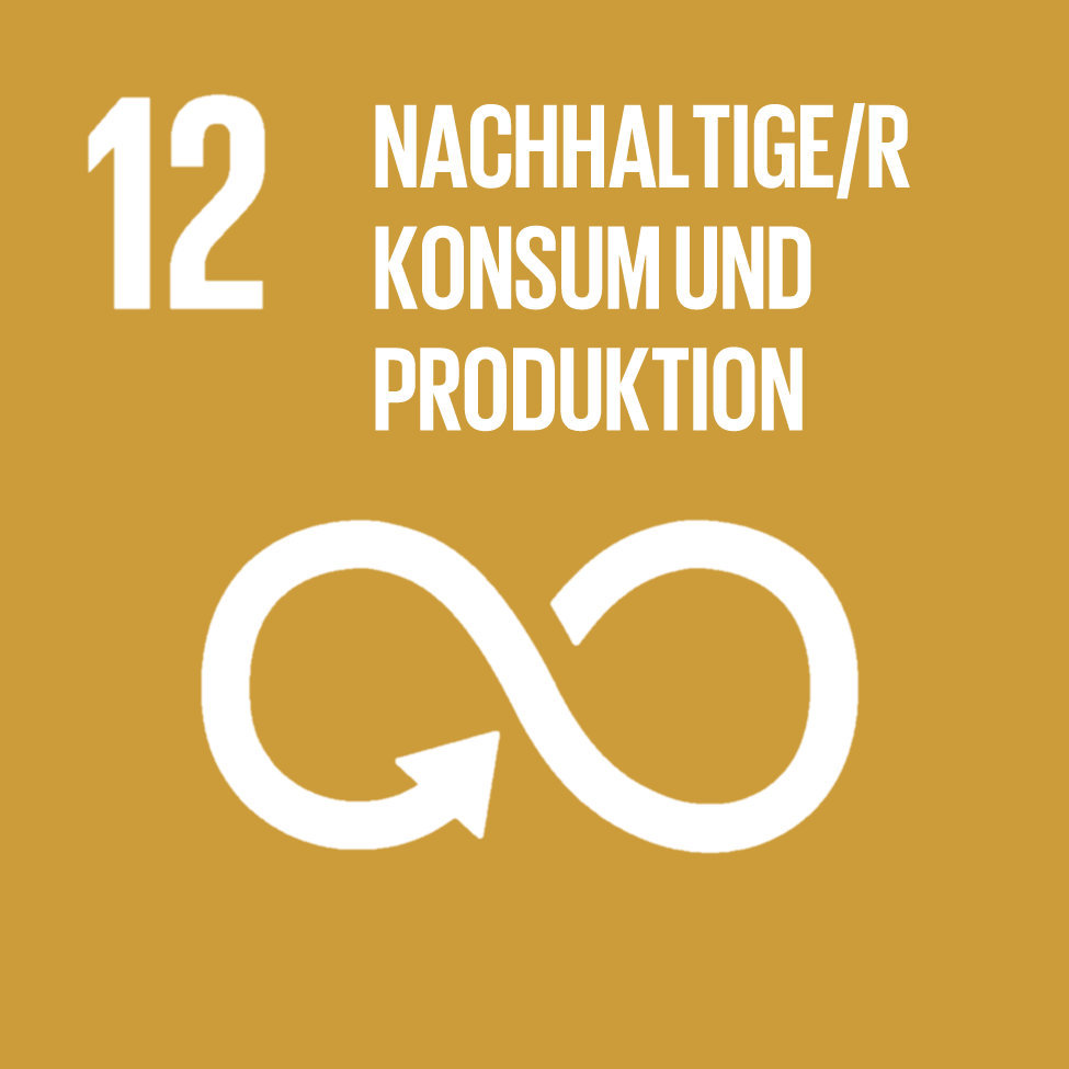 Goal 12-Responsible Consumption and Production-German.jpg