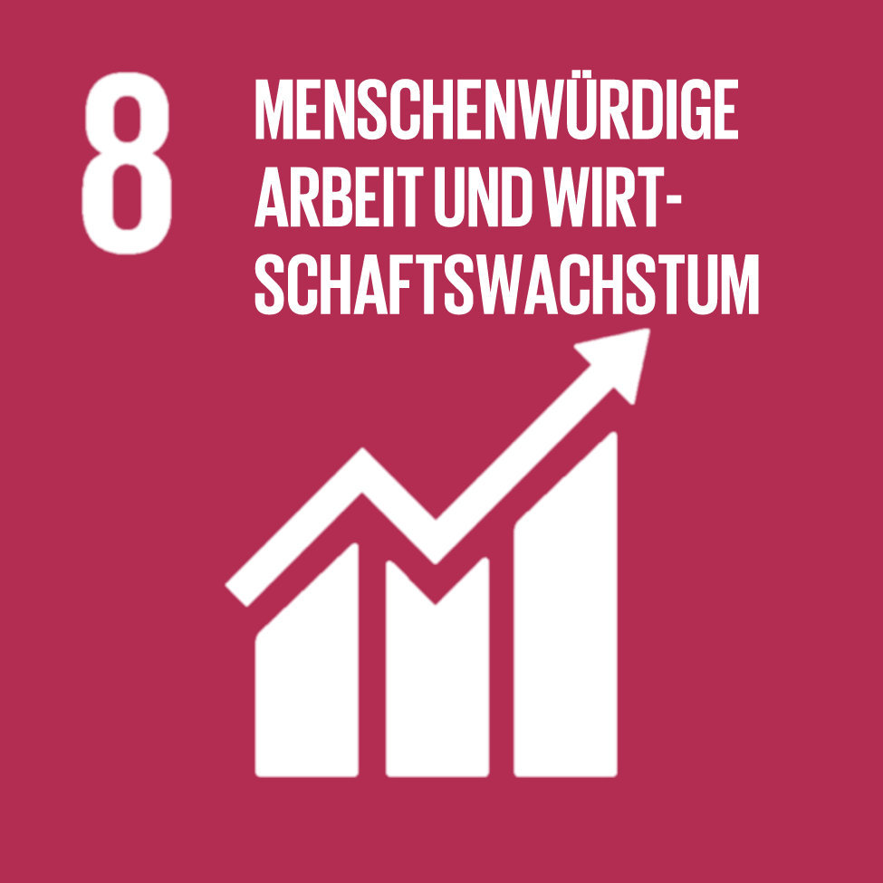 Goal 08-Decent Work and Economic Growth-German.jpg